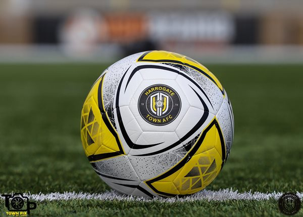 Official Training Football